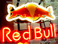 RED BULL ENERGY Budweiser Beer Bar Neon Light Sign